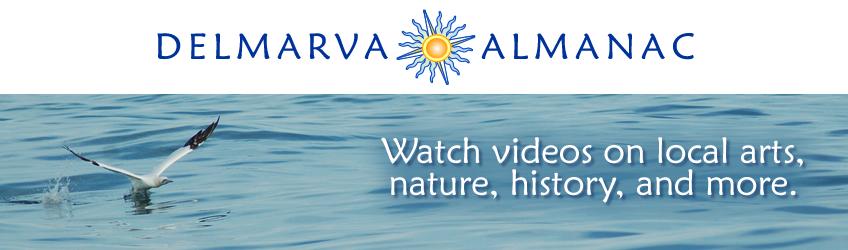 Watch the Delmarva Almanac